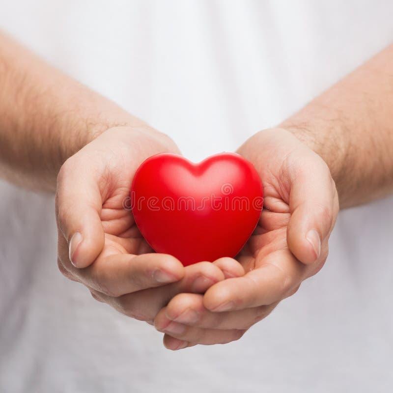 Mans ha foggiato a coppa le mani che mostrano il cuore rosso fotografia stock