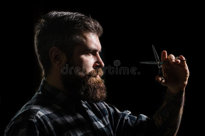 Mans haircut in barber shop. Profile of stylish beard man, scissors. Barber scissors, barber shop. Brutal male, hipster stock image