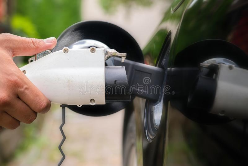Mans hand inserting charger plug into electric car in green environment background. New energy vehicle, NEV is being loaded with stock images