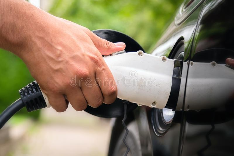 Mans hand inserting charger plug into electric car in green environment background. New energy vehicle, NEV is being loaded with royalty free stock image