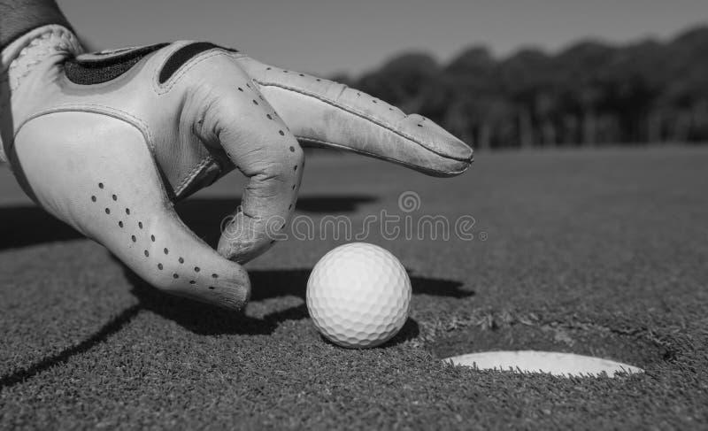 Mans hand som sätter golfboll i hål arkivbilder