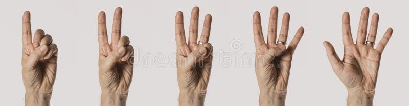 Mans handgester som räknar nummer ett till fem, isolerat på vit bakgrund arkivbilder