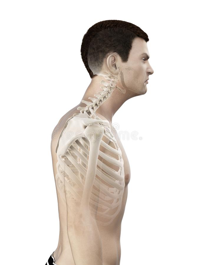 A mans neck stock illustration