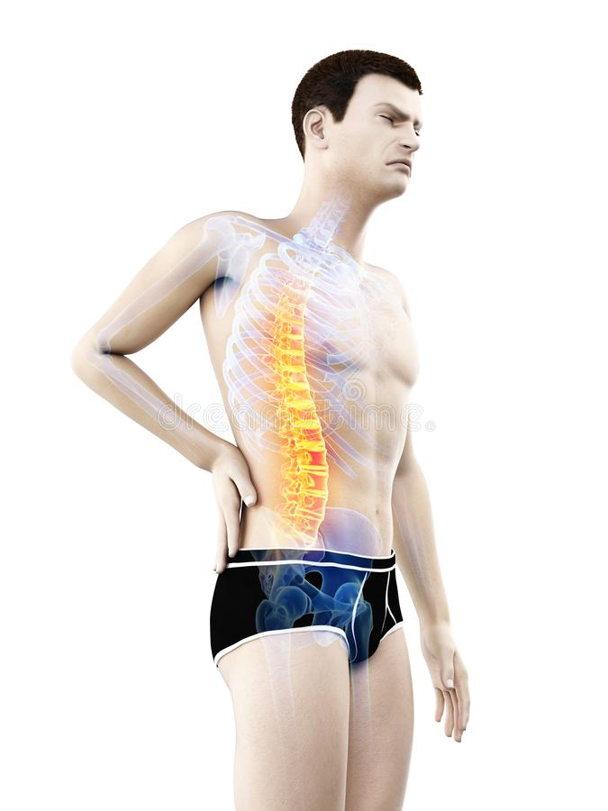 A mans painful back. 3d rendered medically accurate illustration of a mans painful back vector illustration