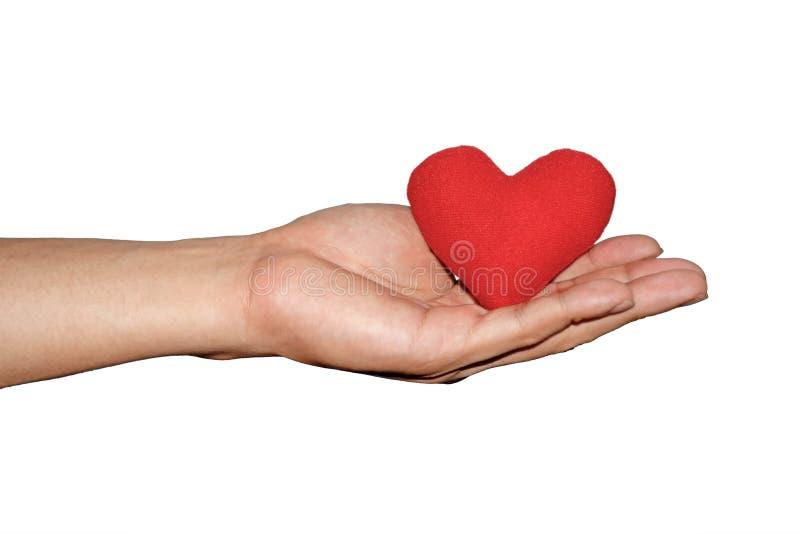 Mans röd hjärta för handhåll på isolatvitbakgrund royaltyfri bild