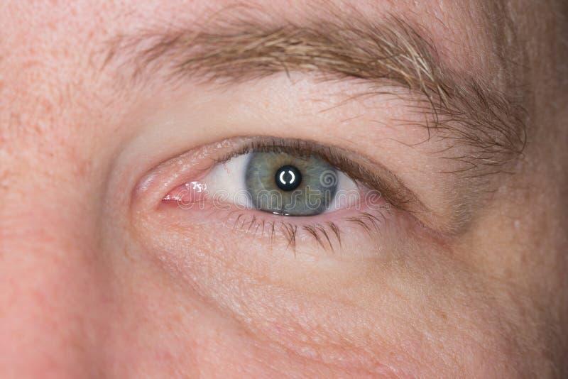 Mans vänstra öga Slut som skjutas upp royaltyfri fotografi