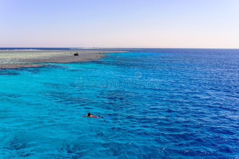 Mansimning i havet av en sandbank royaltyfri fotografi