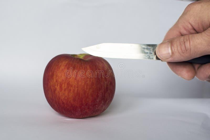 Mansnitt ett rött äpple med en kniv royaltyfria bilder