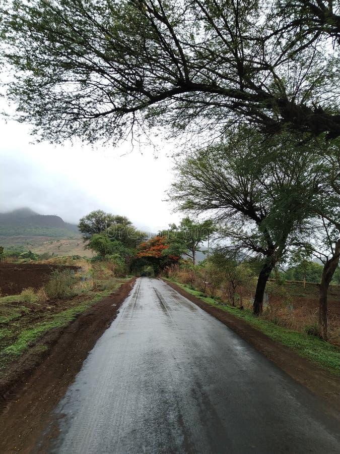 Mansoon Street Road. Villagestreet villagediary greentea greentree mountain fogg rain weather royalty free stock photos