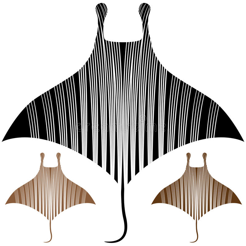 Download Manta Ray Drawing stock vector. Illustration of scratchboard - 27166444