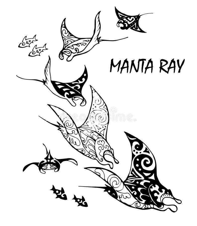 Manta ray and fish in the sea. Black and white stylized vector illustration royalty free illustration