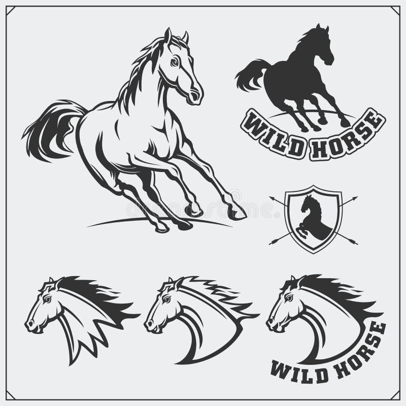 Manteau de cheval des bras héraldique Labels, emblèmes et éléments de conception pour le club de sport illustration libre de droits