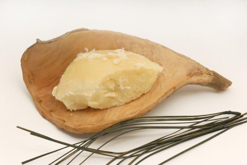 Manteiga de Shea fotografia de stock royalty free