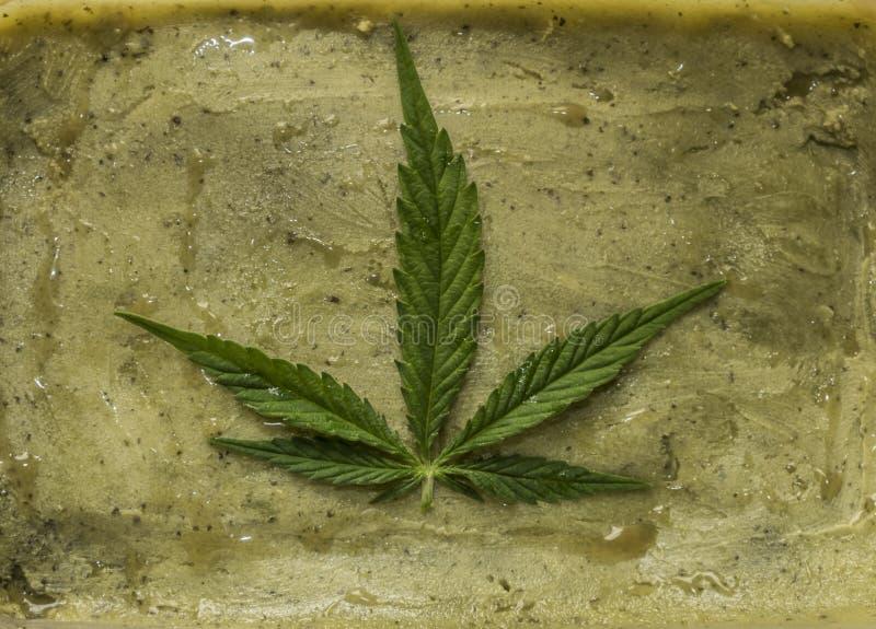 Mantequilla verde de la marijuana después de acabar cocinar imágenes de archivo libres de regalías