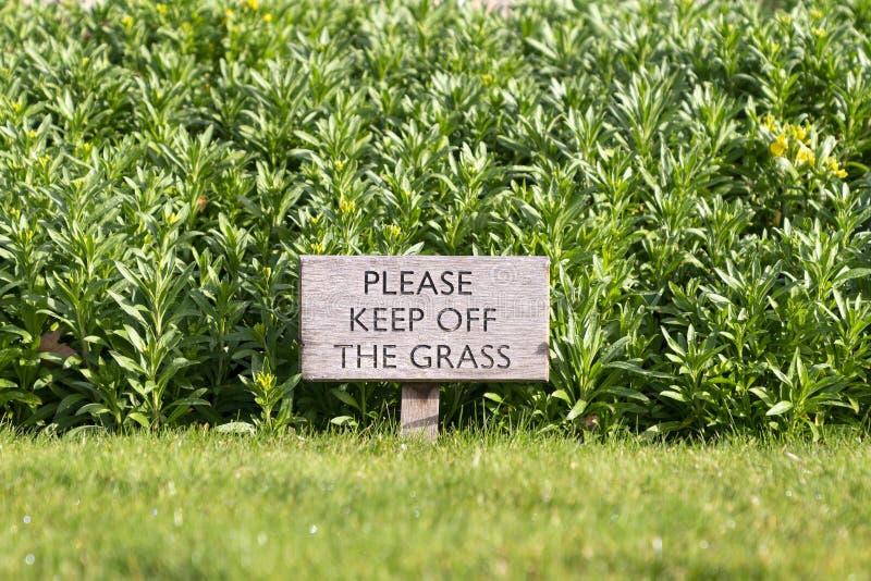 Mantiene de la muestra de la hierba fotos de archivo