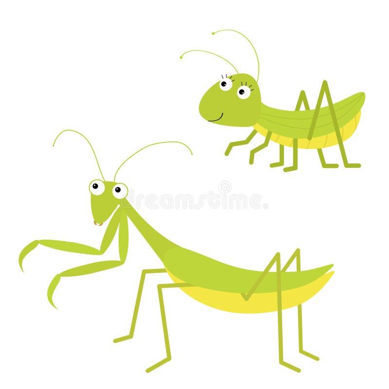 Mantis, набор значка кузнечика r Зеленое изолированное насекомое Моля mantid Большие глаза r иллюстрация штока