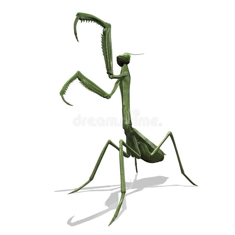 mantis illustration libre de droits