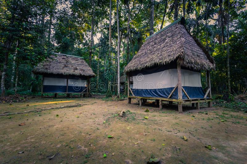 Manu National Park, Perù - 7 agosto 2017: Casette della giungla di Coc fotografie stock
