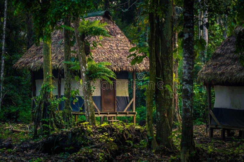 Manu National Park, Perù - 8 agosto 2017: Casette di Cocha Otor fotografie stock