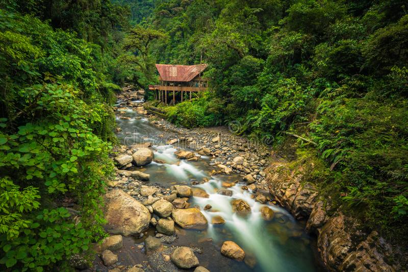 Manu National Park, Peru - August 05, 2017: Jungle lodge by a. Manu National Park, Peru - August 05, 2017: A jungle lodge by a river in Manu National Park, Peru stock photos