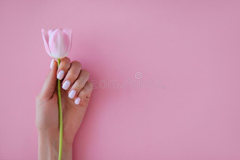 Manucure et fleur images libres de droits