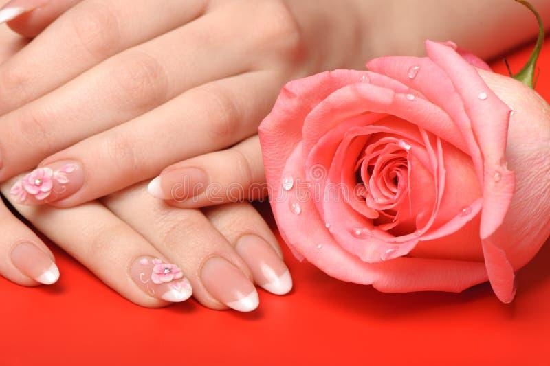 Manucure. Mains femelles sur le fond rouge photos stock