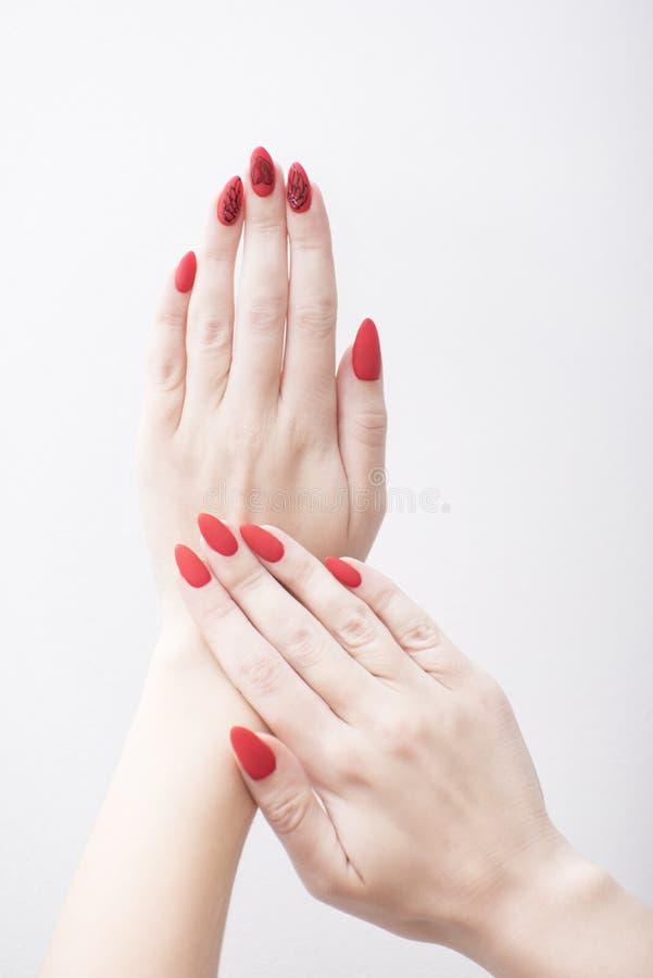 Manucure rouge avec un modèle mains femelles de fond blanches image libre de droits