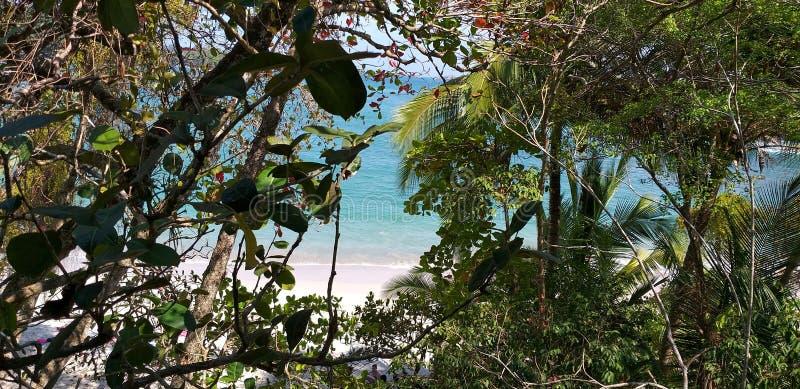 Manuel Antonio Beach imagens de stock royalty free