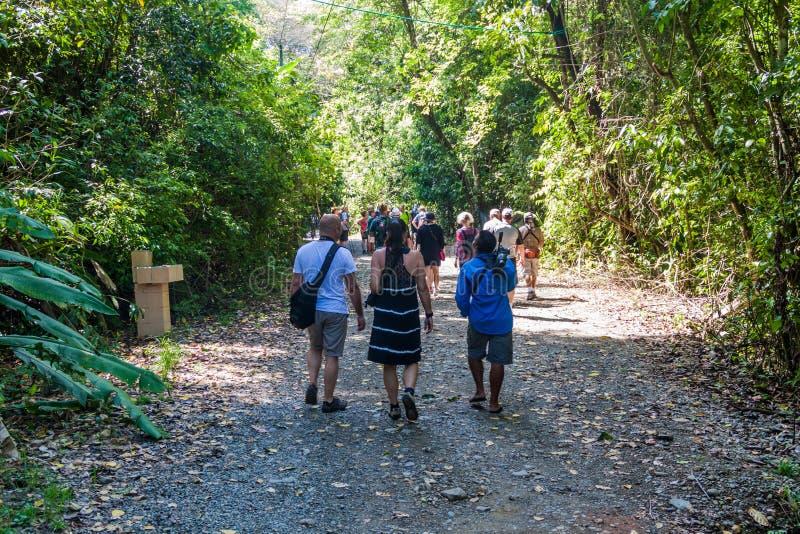 MANUEL ANTONIO, COSTA RICA - 13 DE MAIO DE 2016: Multidões de turistas no parque nacional Manuel Antonio, Costa Ri fotografia de stock royalty free