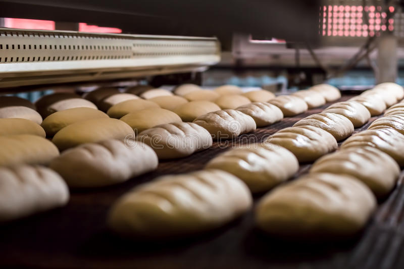 Download Manufacture of bread. stock photo. Image of dough, bread - 68686904