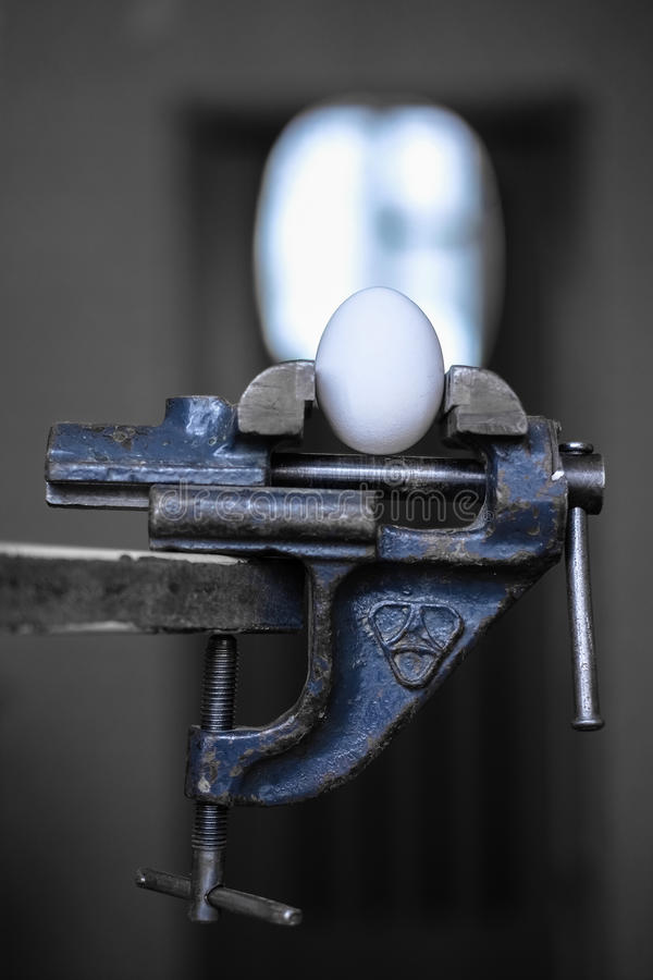 Egg in the grip stock image