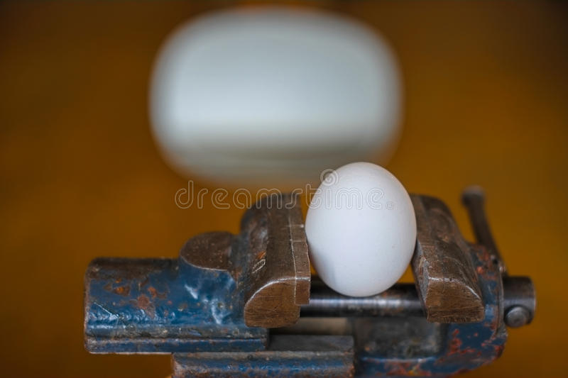 Egg in the grip royalty free stock photography