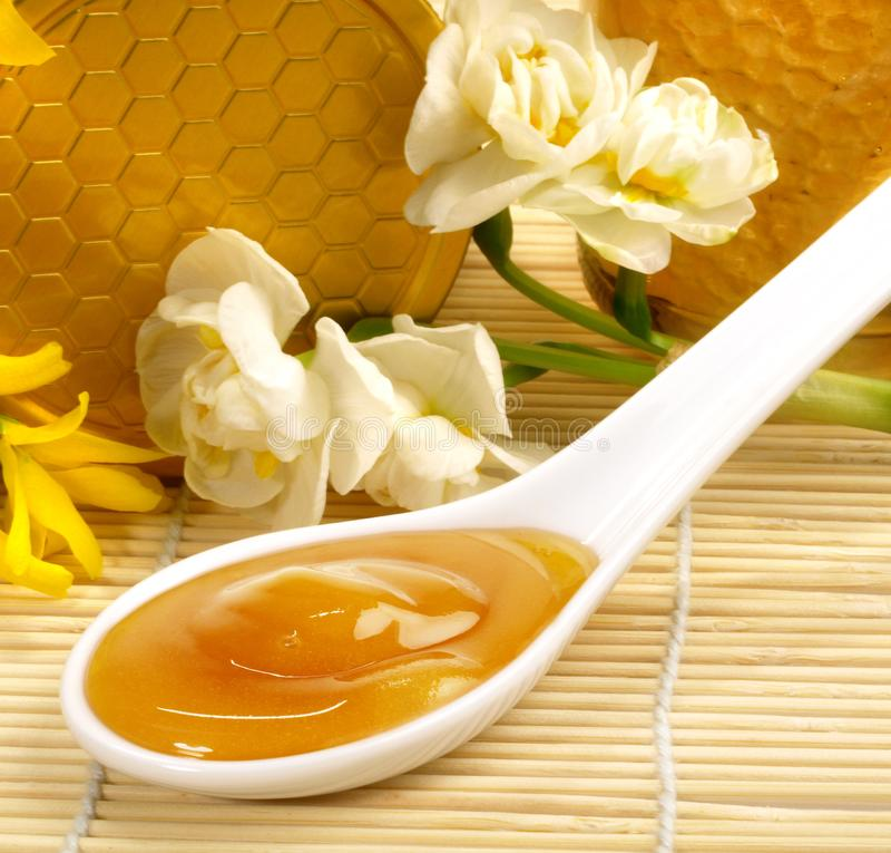 Manuka Honey in a Spoon royalty free stock photography