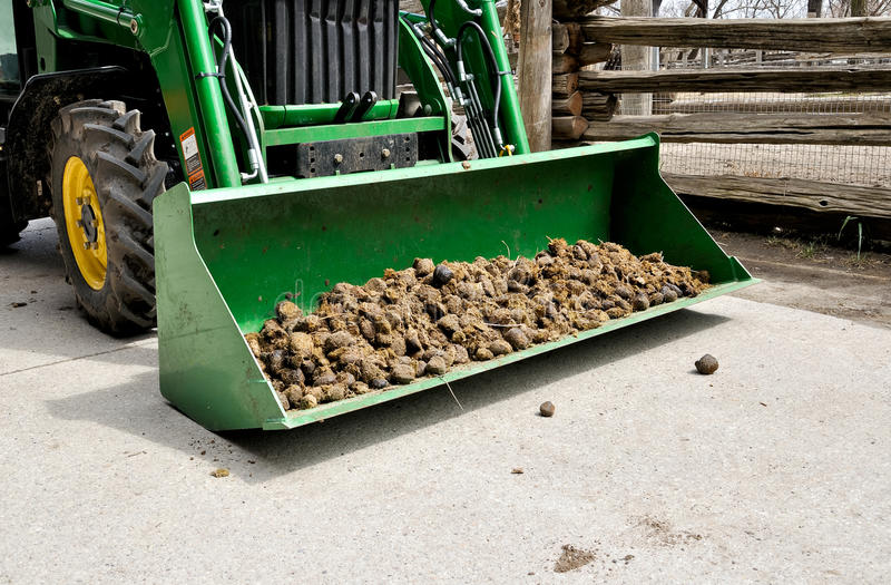 Download Manure Royalty Free Stock Photo - Image: 19306365