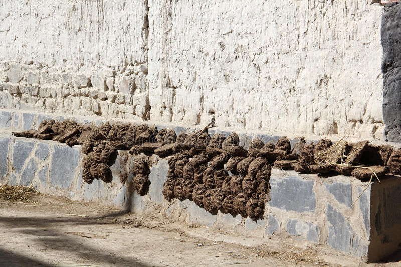 Manure dried in the sun at Gyantse, Tibet royalty free stock photography