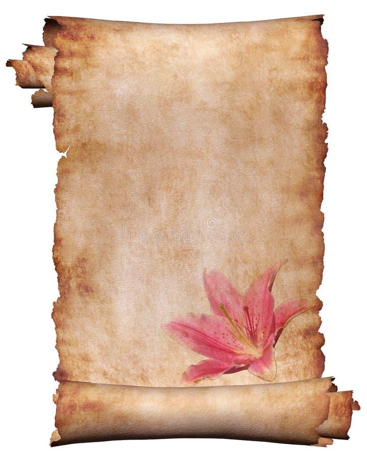 Manuscrito con las flores 3 foto de archivo libre de regalías