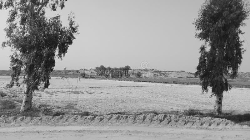 Manutenzione del suolo immagine stock libera da diritti