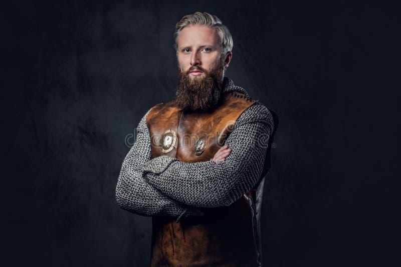 ManViking en iklädd nordisk harnesk royaltyfria bilder