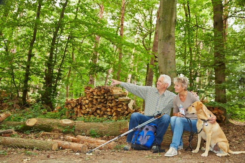 Manvisningdestination av att fotvandra tur i skog arkivfoton
