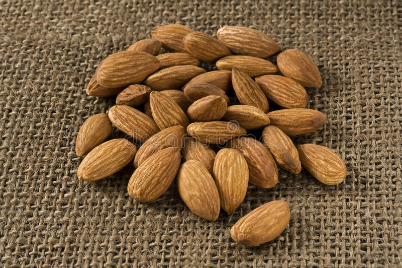 Many Almonds Stock Image