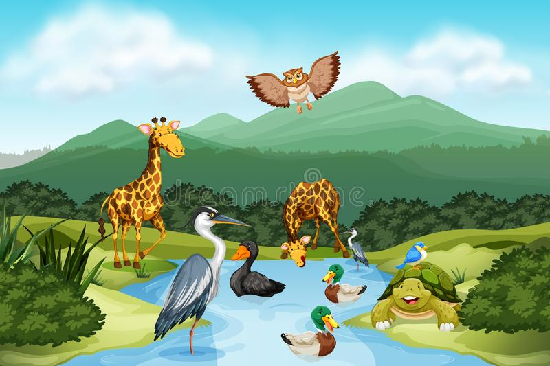 Many animals in nature stock illustration