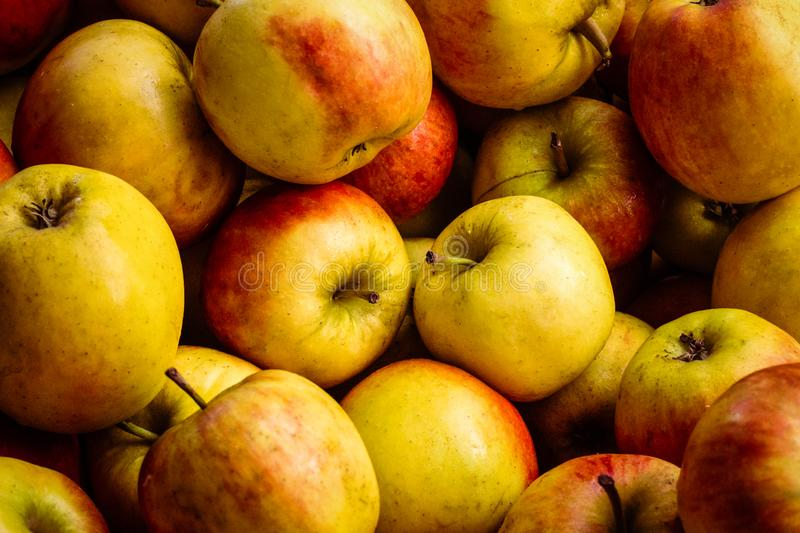 Many apples - apple background. Many apples - apple fruit background - a a a a stock images