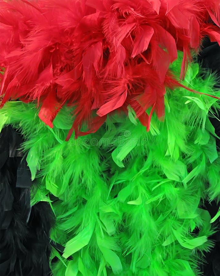 many beautiful colorful feathers, fashion, royalty free stock image