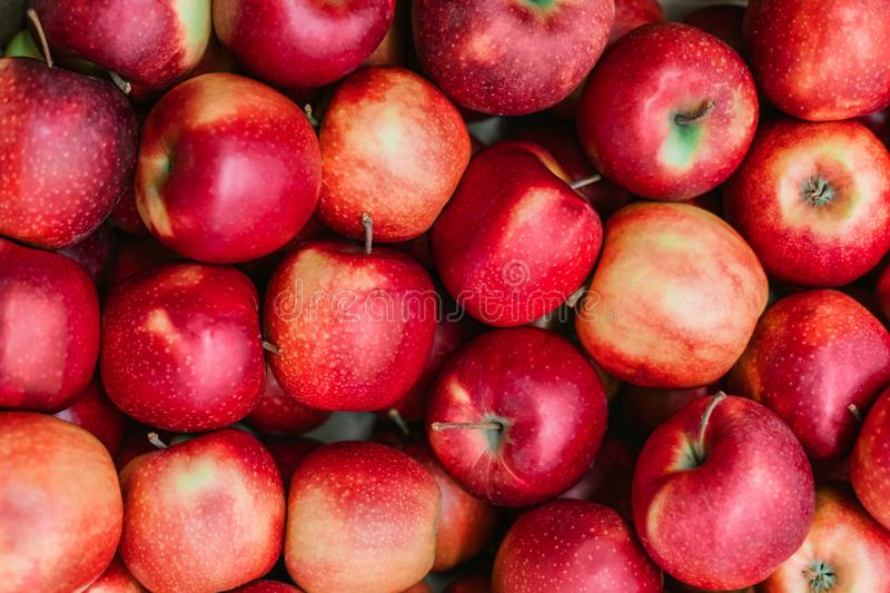 Many beautiful red apples in a box in a supermarket. Red apples background royalty free stock photos