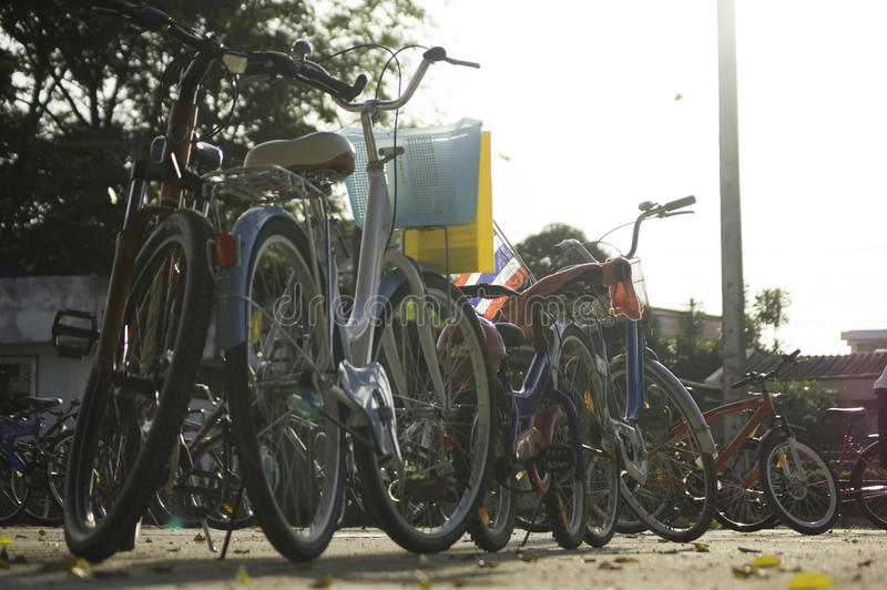 Many bicycles with beautiful light stock image