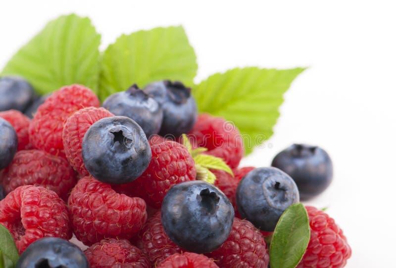 Many blueberries & raspberries. stock photos