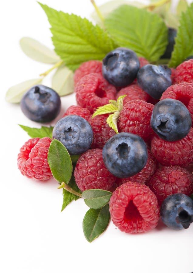Many blueberries & raspberries. royalty free stock photos
