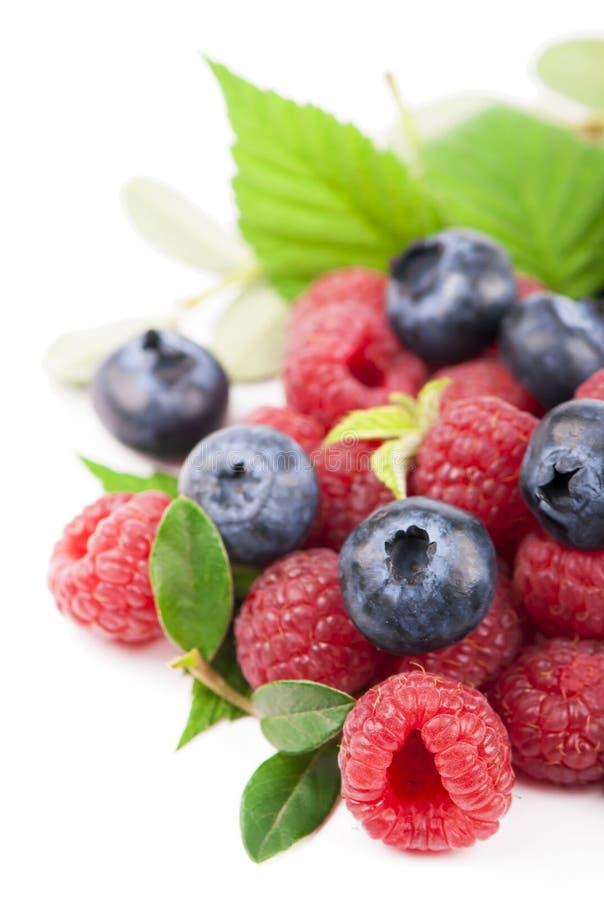 Many blueberries, raspberries. Isolated white stock photo