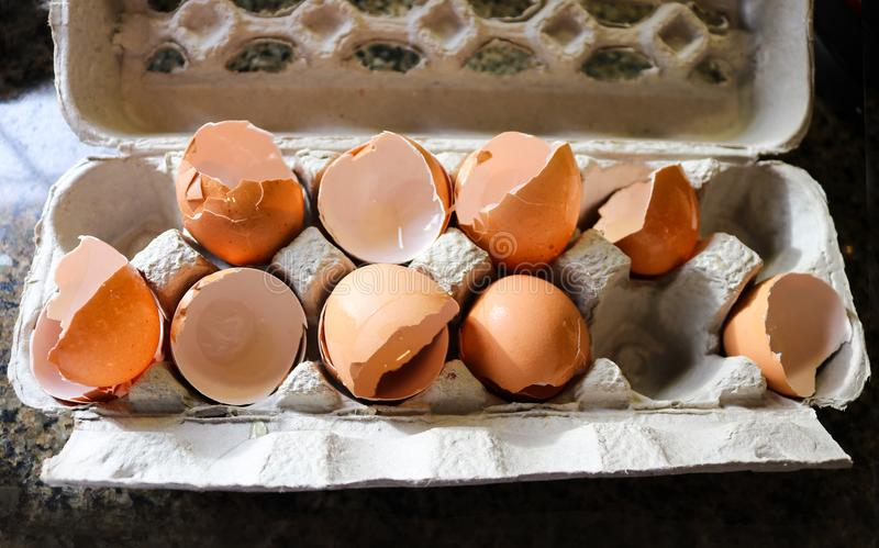 Broken egg shells from eggs used for cooking in paper mache egg carton on marble countertop stock images