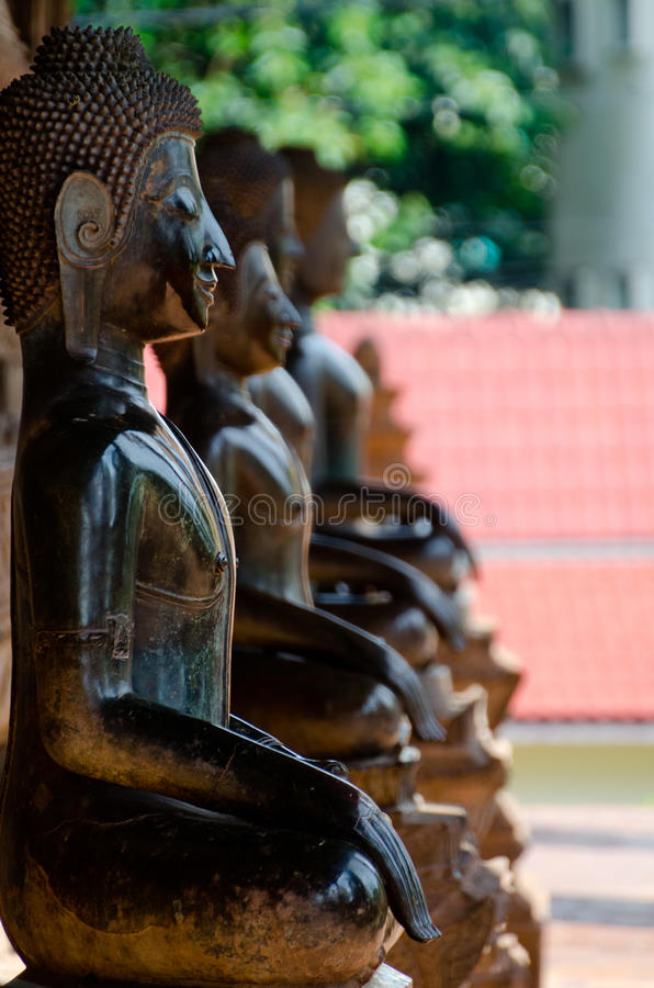 Many Buddhas meditate royalty free stock photo